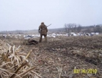waterfowl hunting guide Missouri