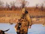 Missouri snow goose hunting guide