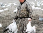 Missouri snow goose hunting guide