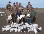 guided snow goose hunt NW Missouri