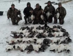 guided snow goose hunt