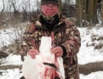 guided snow goose hunts