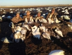guided missouri snow goose hunts