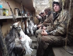 guided Missouri goose hunting