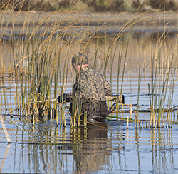 Tips for Missouri Waterfowl hunting