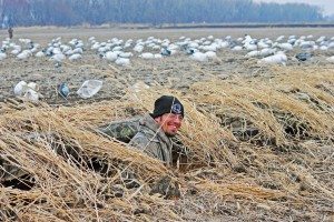 A Step by Step Guide to Snow Goose Hunts